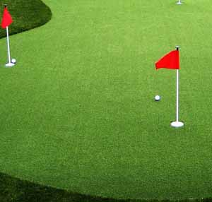 Synthetic putting green turf price
