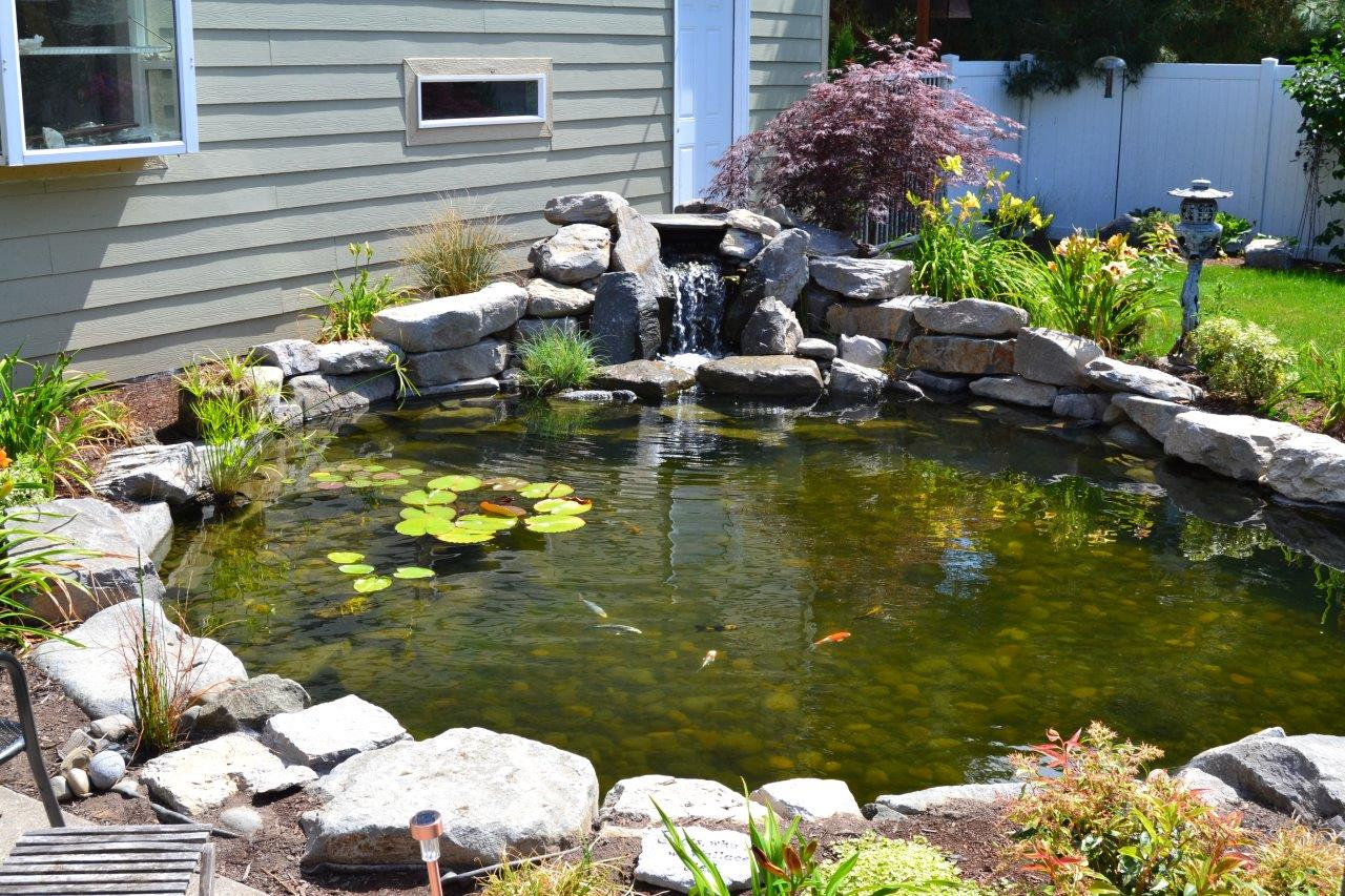 Waterfall & Beginning of Large Pond (more...)
