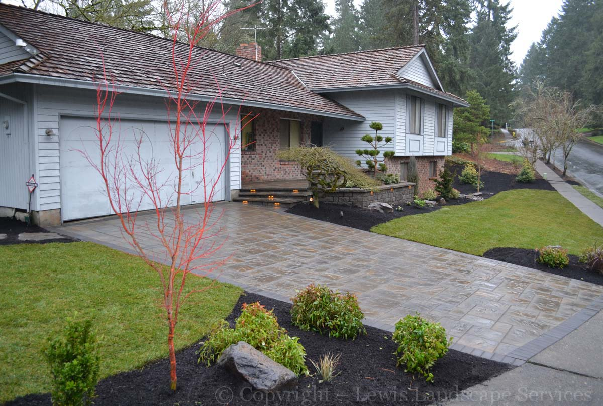 Winter 2015 - Front Yard - New Paver Driveway, New Sod Lawn, New Plants
