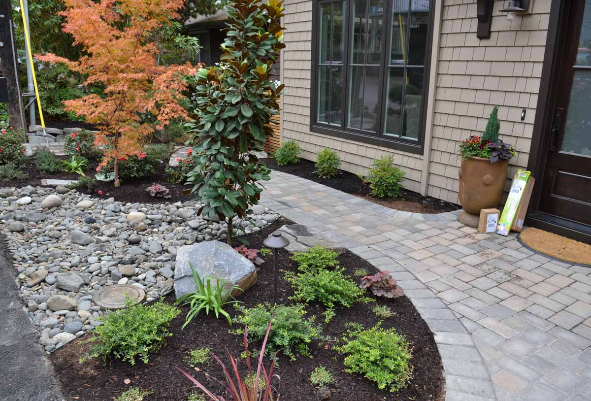 Front Yard - Paver Pathway, Planting