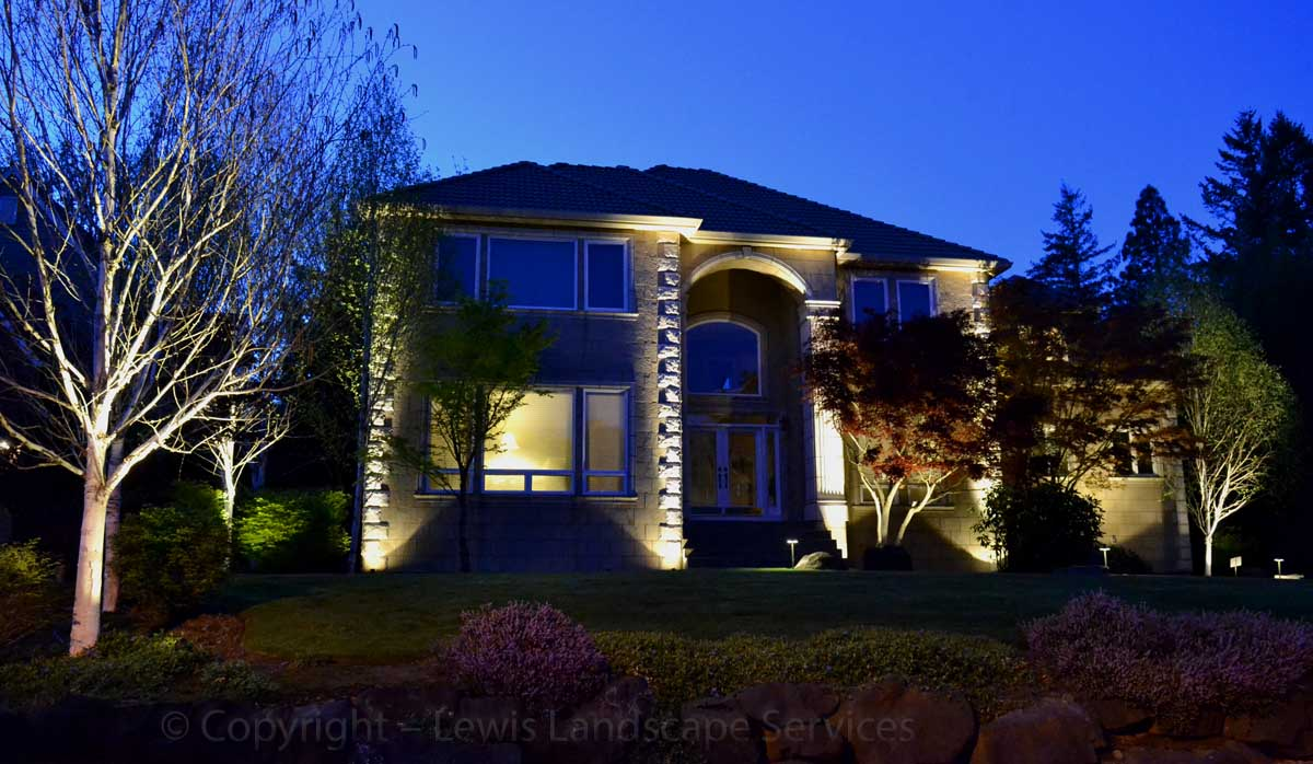 Mixture of Structural Lighting & Tree Uplighting at an Installation We Did in NW Portland