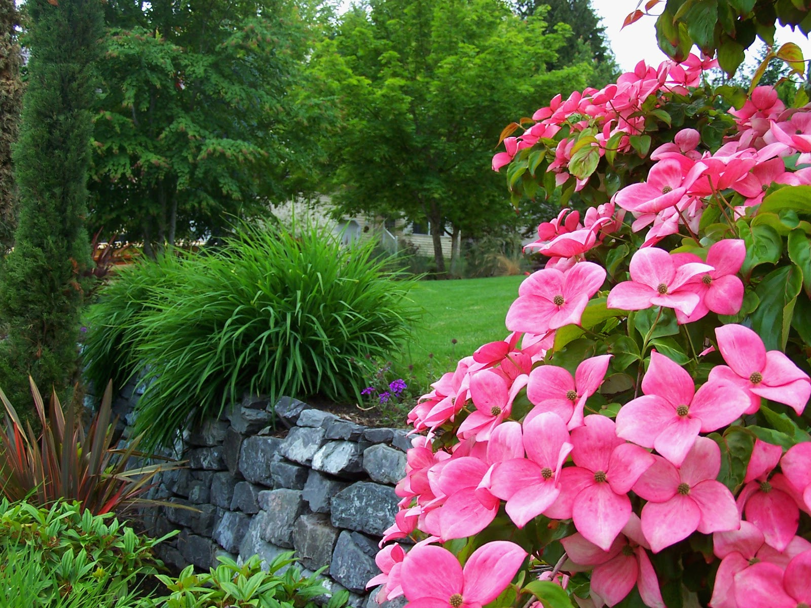 Landscaping With Seasonal Color