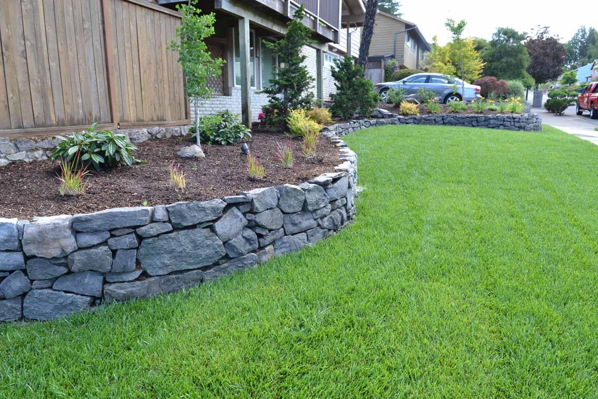 Basalt Rock Wall, Planting, New Sod Lawn