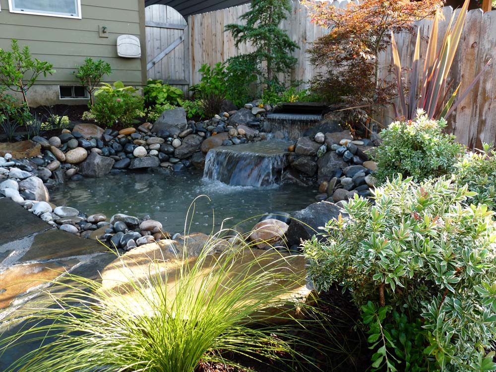 Pond & Waterfall