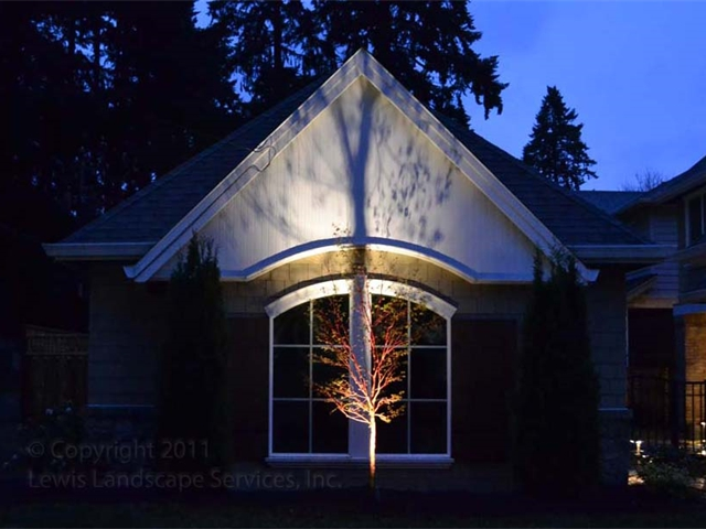 Landscape Lighting (Uplighting) on tree with a Silhoutte Effect on this house in Lake Oswego, OR