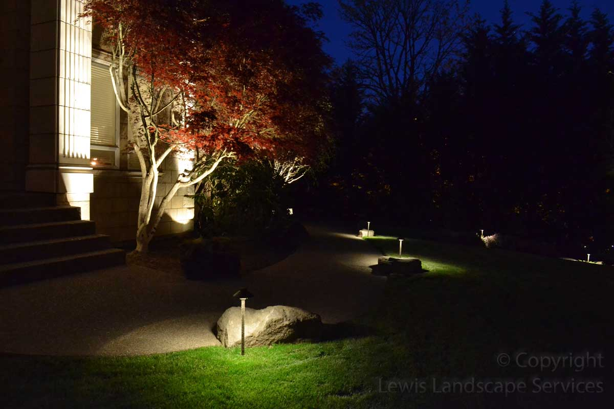 Path Lights Along Pathway & Tree Uplighting at Project we did in Portland, OR