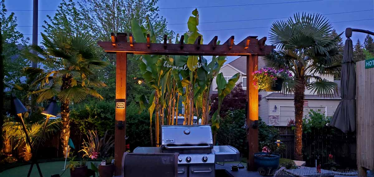 Lighting on Arbor & Other Lighting in this Tropical Landscape We Installed in Beaverton