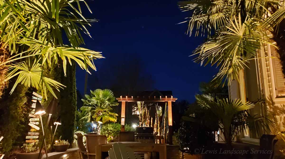 Outdoor Lighting in a Tropical Landscape We Built in Beaverton