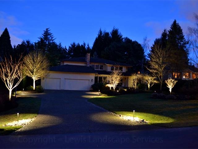 Mixture of Tree Uplighting & Pathway Lighting at at Lighting Job in Portland