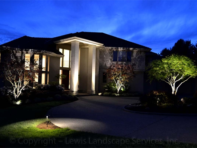 Architectural & Landscape Lighting Display at a Portland client's home
