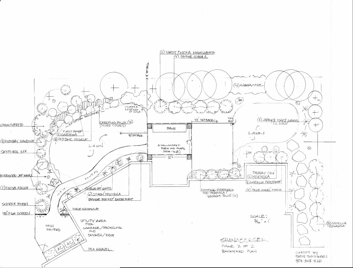 Back Yard Landscape Design Plans