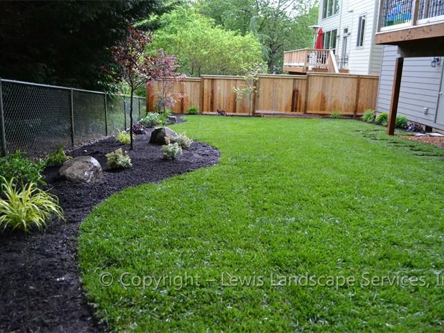 New Sod Lawn Day 1