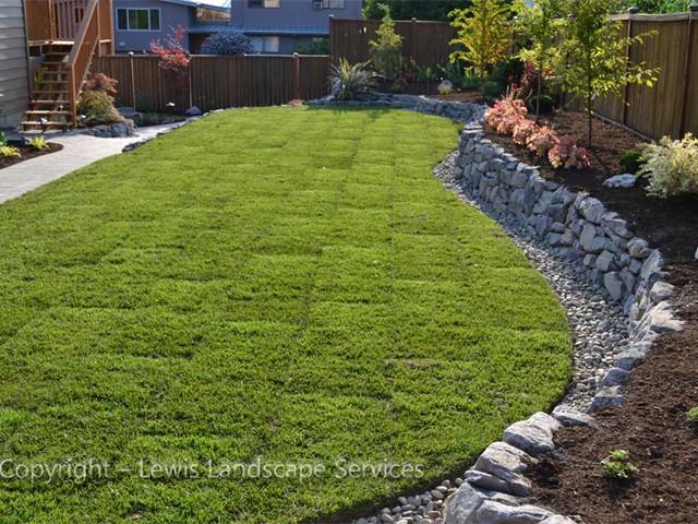New Sod Lawn, Day 1