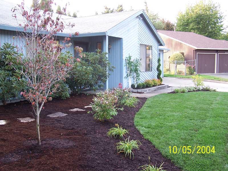 Before-after-new-landscape-irrigation 003