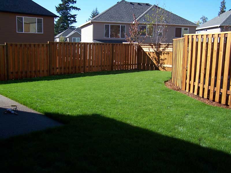 Before-after-new-sod-lawn-from-bare-dirt 003