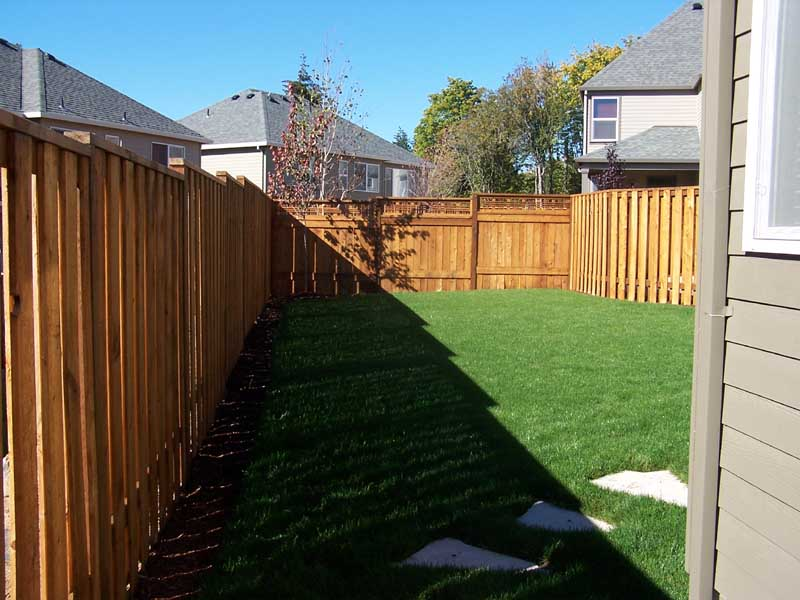 Before-after-new-sod-lawn-from-bare-dirt 005