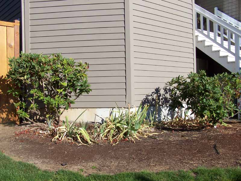 Before-after-retaining-walls-and-more 000