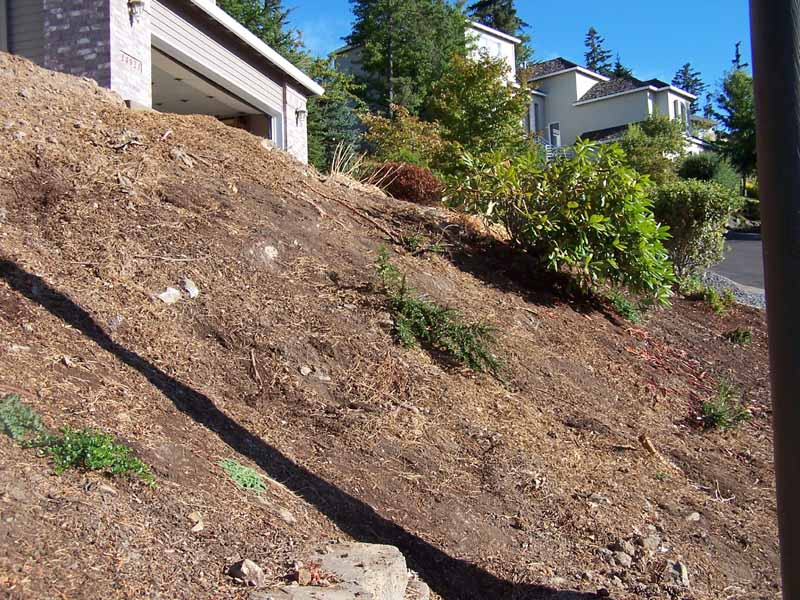 Before-after-retaining-walls-and-more 008