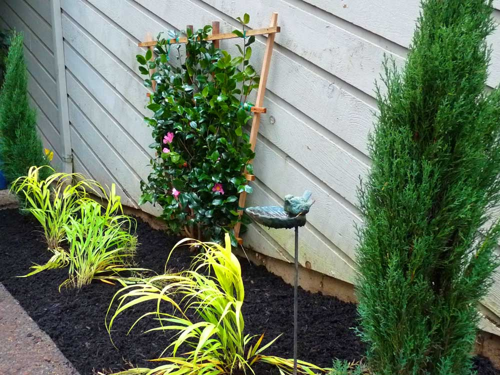 Full-landscape-projects-arthur-project-fall-2009-planting-front-yard 002
