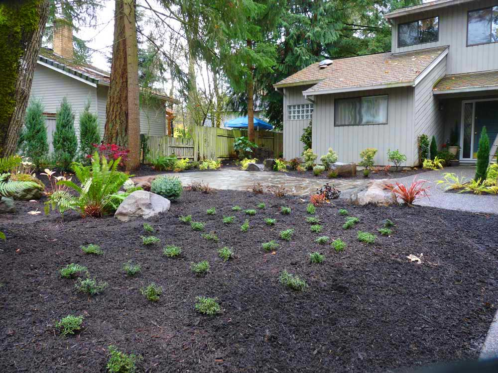 Full-landscape-projects-arthur-project-fall-2009-planting-front-yard 003