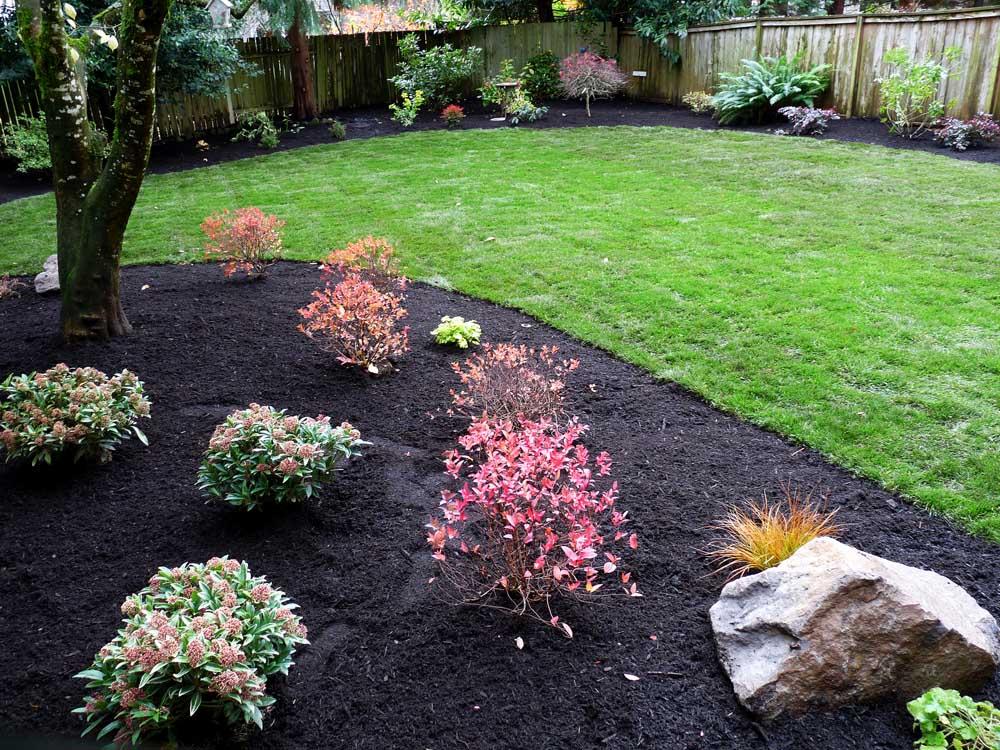 Full-landscape-projects-arthur-project-fall-2009-plants-new-sod-lawn-back-yard 000
