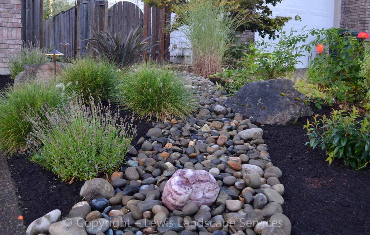 Dry Streambed & Planting