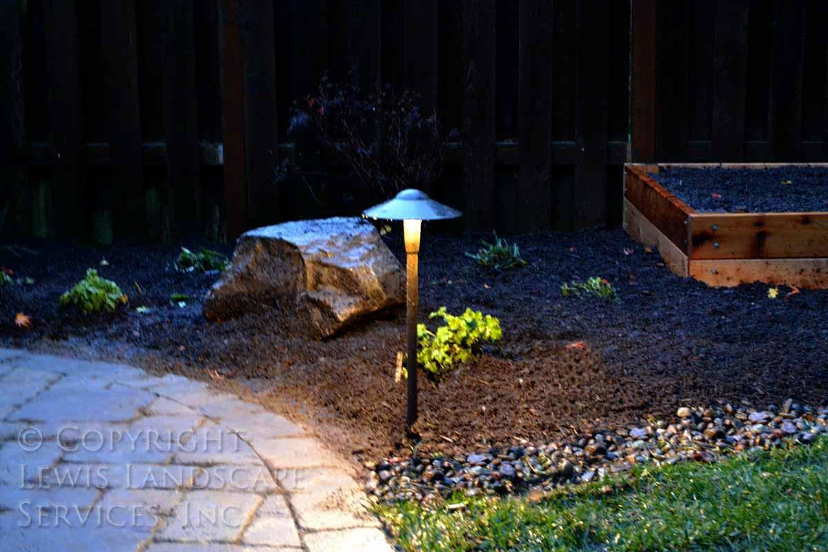 Outdoor Lighting in Back Yard