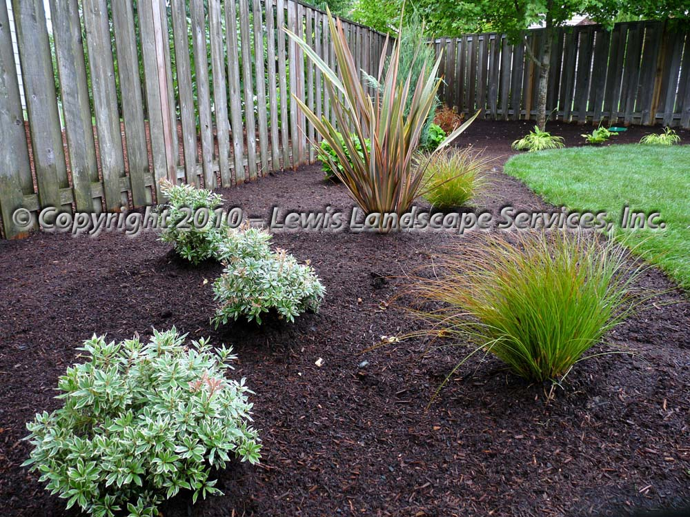 Full-landscape-projects-coleman-project-summer-2010 006