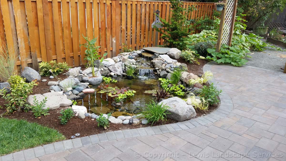 Back Yard Pond / Waterfall Water Feature