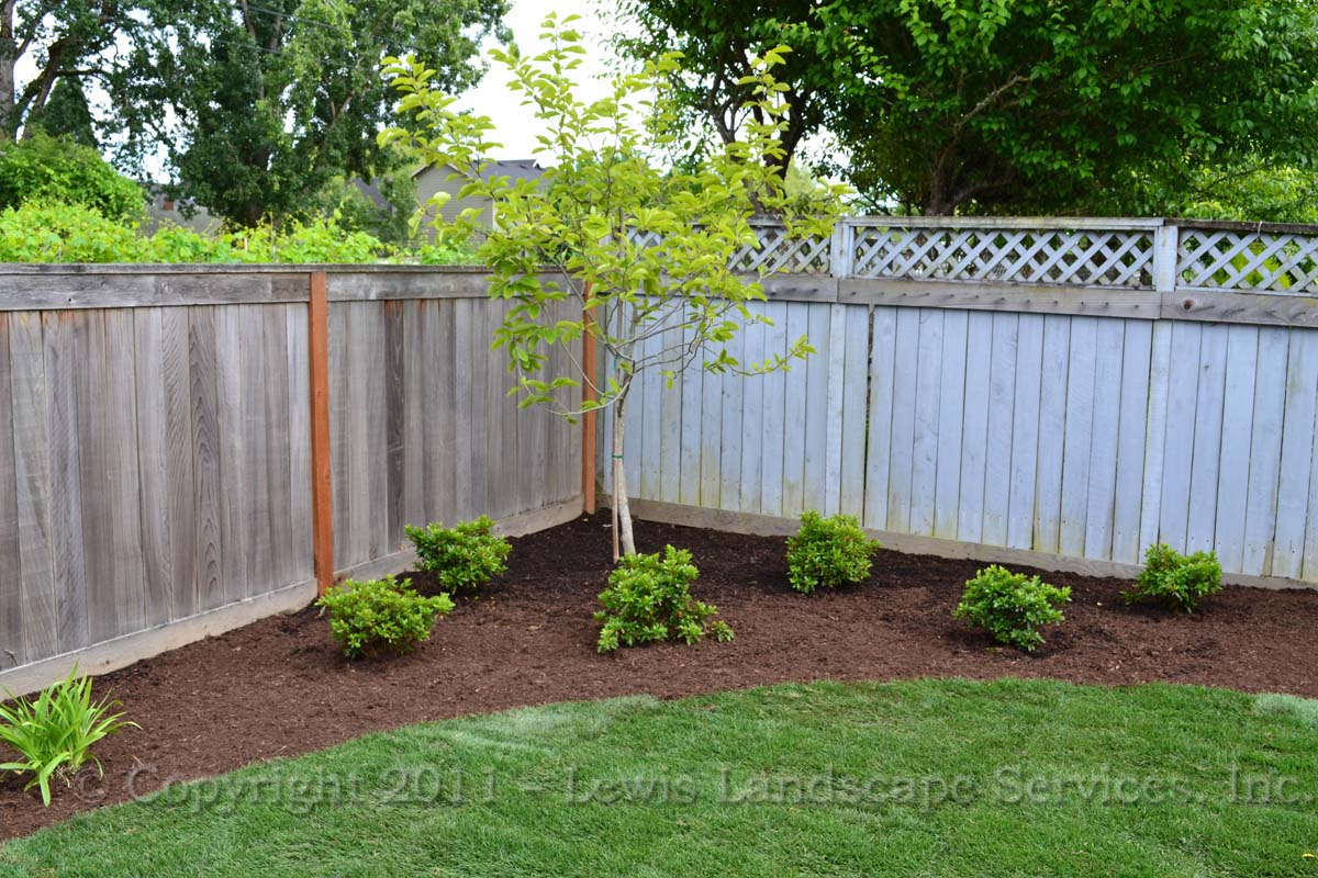 Full-landscape-projects-epps-project-summer-2011 003