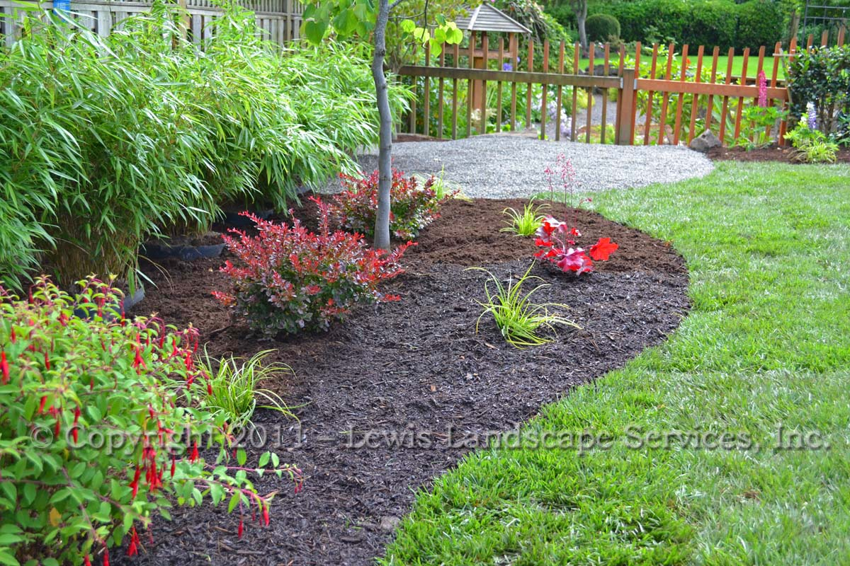 Planting, New Sod Lawn