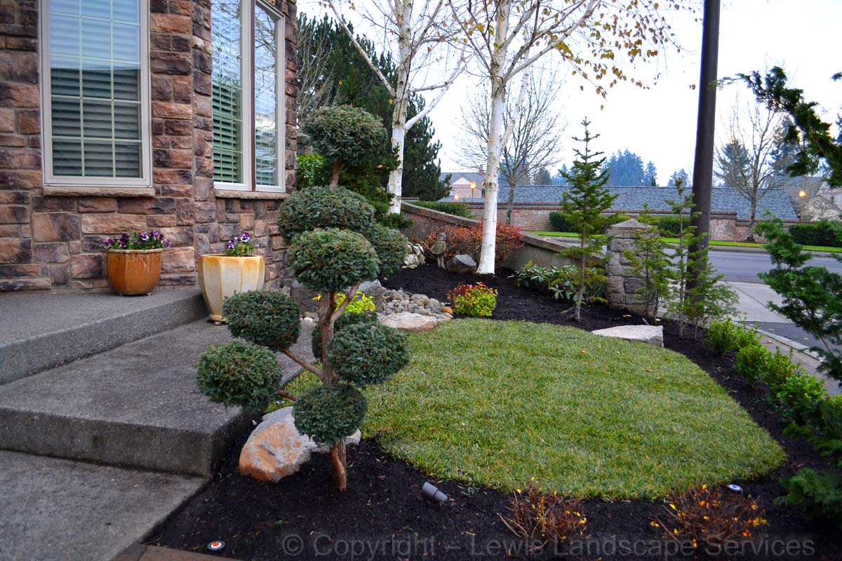 Retaining Wall, New Sod Lawn, Plants