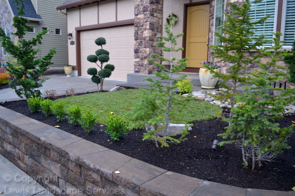 Retaining Wall, New Sod Lawn, Plants