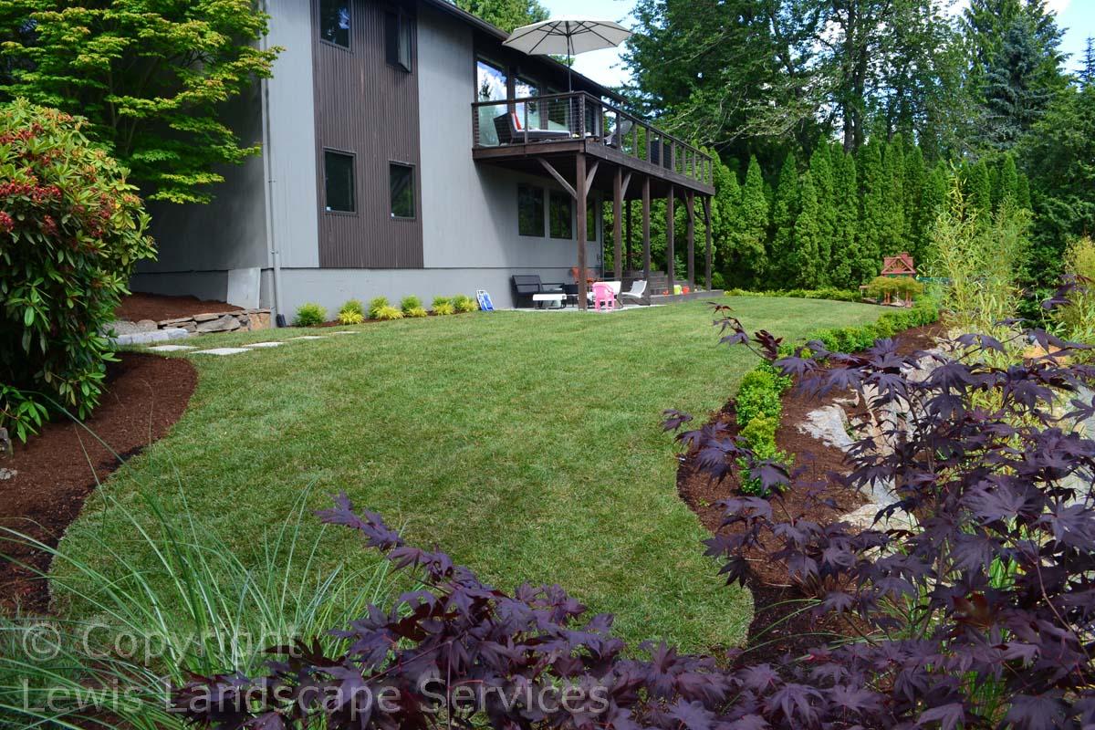 New Sod Lawn, Planting