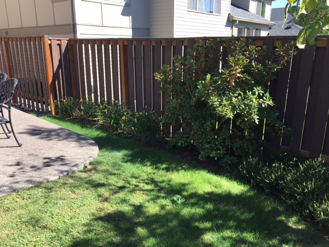 Full-landscape-projects-stevens-project-summer-16-before-photos 006