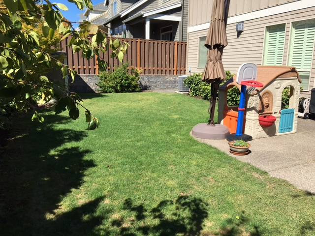 Full-landscape-projects-stevens-project-summer-16-before-photos 008