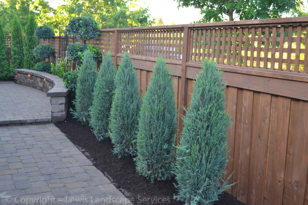 New Trees, Pavers, Seat Wall