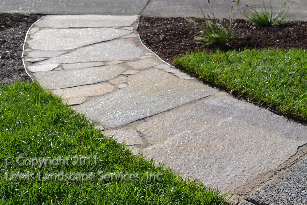 Full-landscape-projects-whyte-project-summer-2011 002