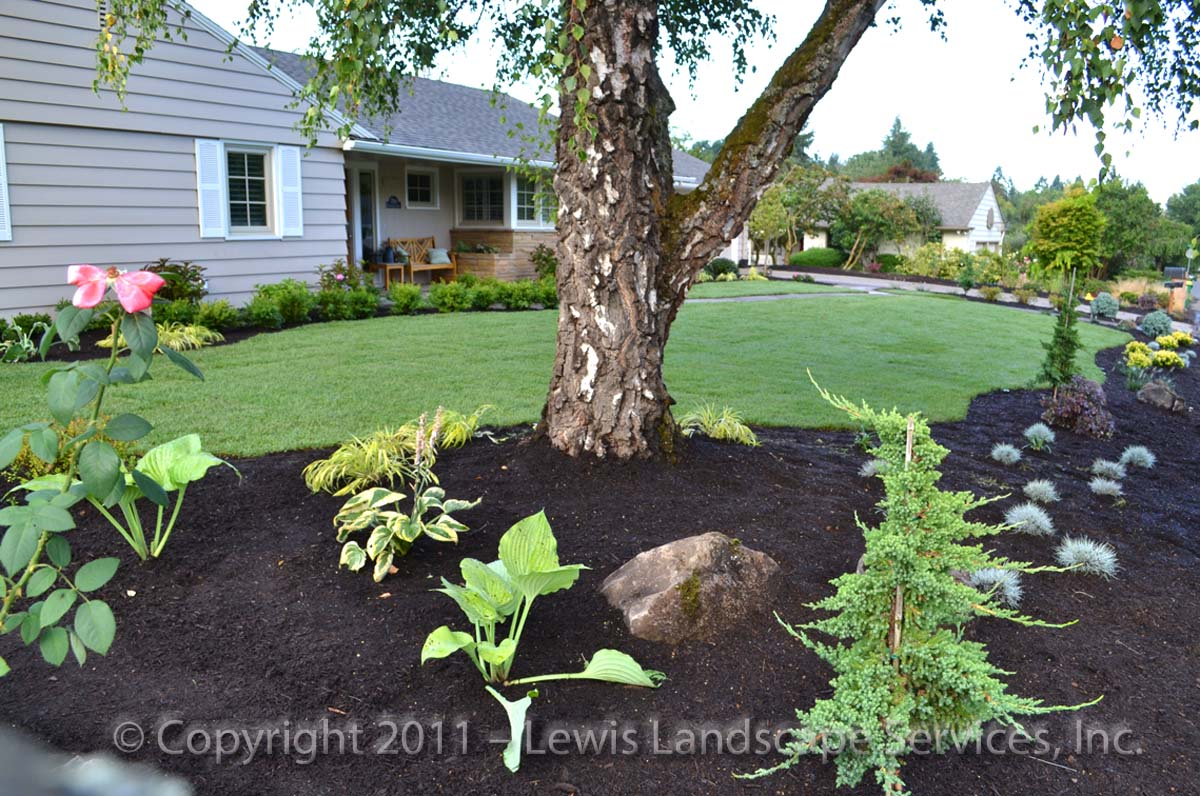 Full-landscape-projects-whyte-project-summer-2011 010
