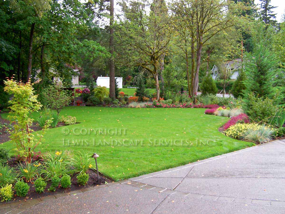 Front Lawn, Plantings