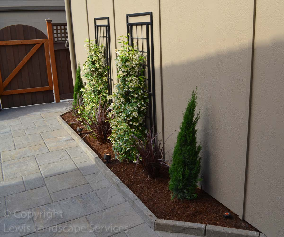 Our-feature-projects-patel-project-back-yard 005