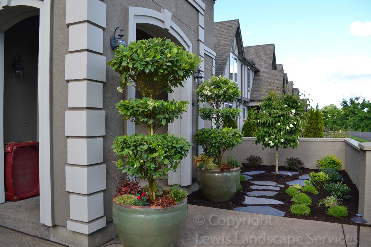 Our-feature-projects-patel-project-front-yard 003