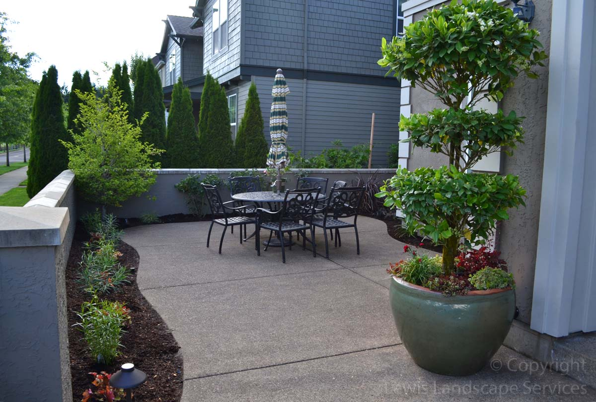 Our-feature-projects-patel-project-front-yard 005