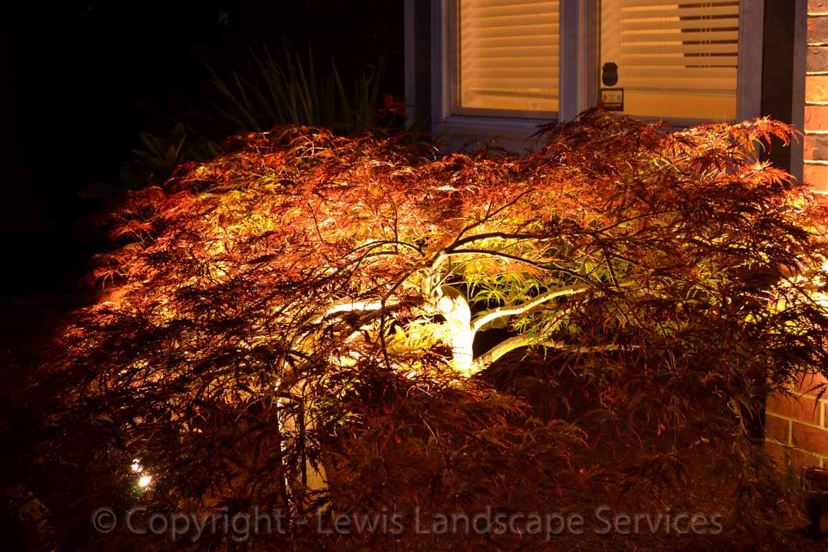 Outdoor-landscape-architectural-lighting-babst-project-summer-2012 003