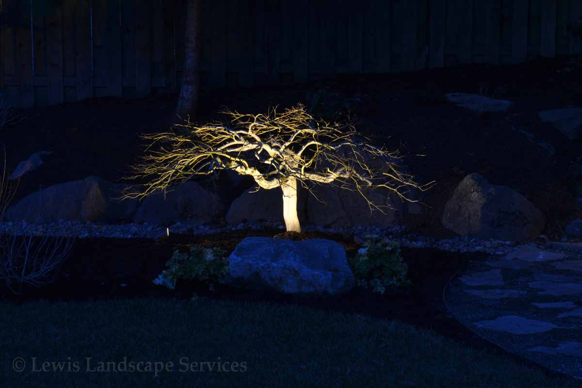 Outdoor-landscape-architectural-lighting-bostock-project-winter-1718 001