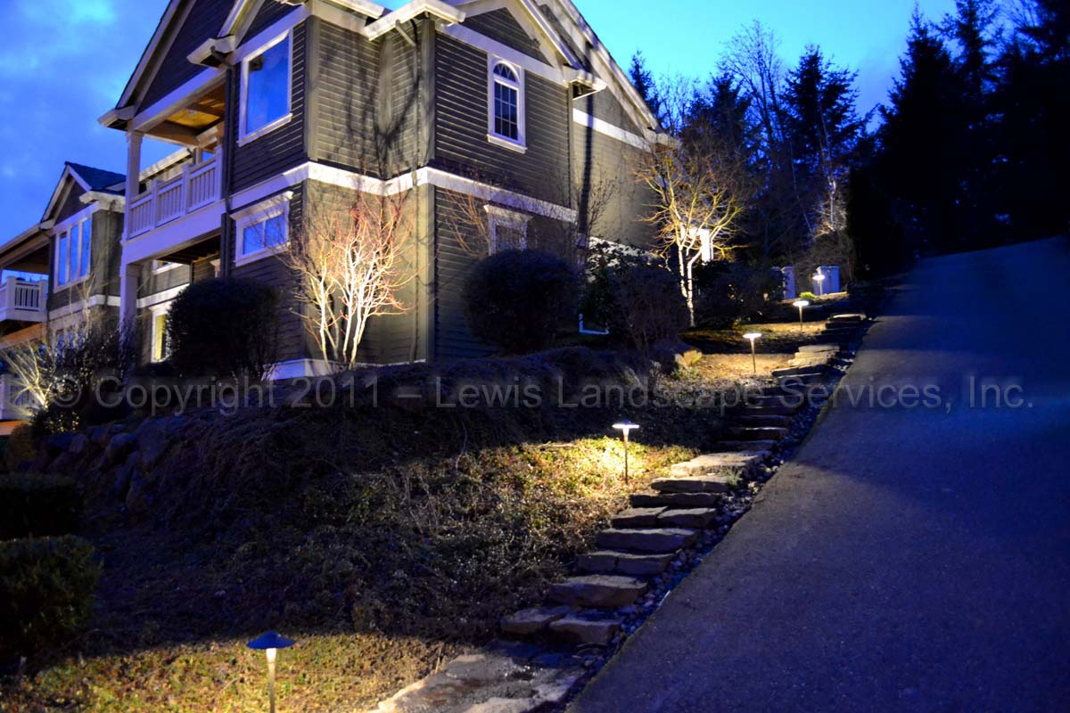 Outdoor-landscape-architectural-lighting-brenner-project-spring-2011 000