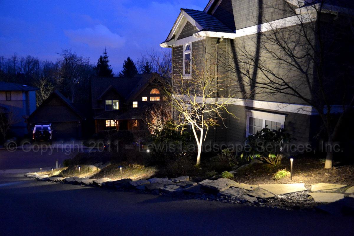Outdoor-landscape-architectural-lighting-brenner-project-spring-2011 002