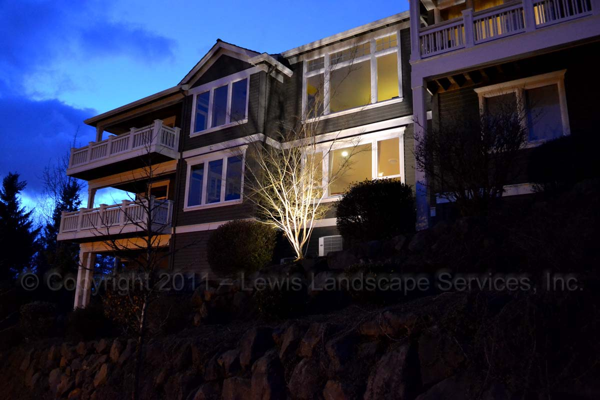 Outdoor-landscape-architectural-lighting-brenner-project-spring-2011 004