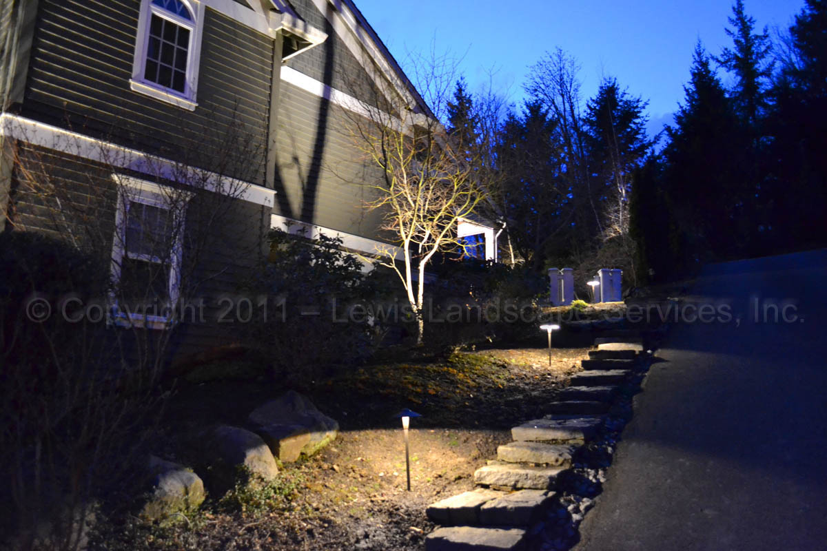 Outdoor-landscape-architectural-lighting-brenner-project-spring-2011 005
