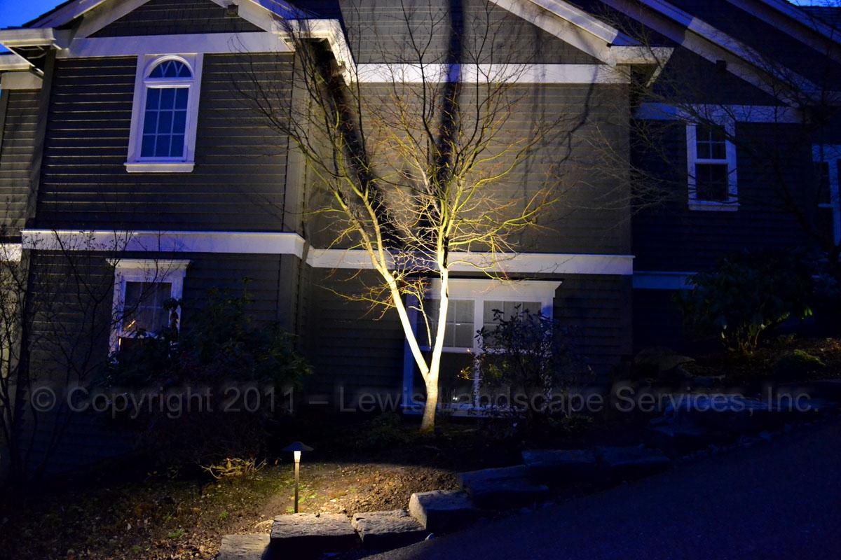 Outdoor-landscape-architectural-lighting-brenner-project-spring-2011 006